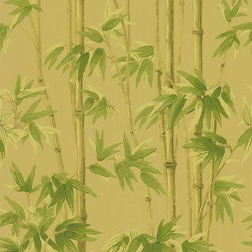 Paradise Beige Bamboo