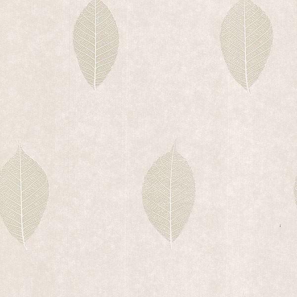 Malabar Cream Leaf