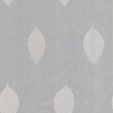 Malabar Light Grey Leaf