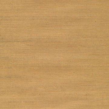 Airi Beige Grasscloth