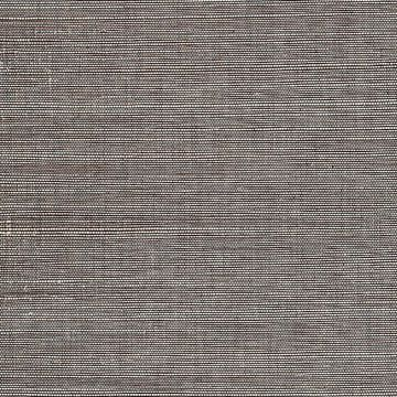 Daio Grey Grasscloth