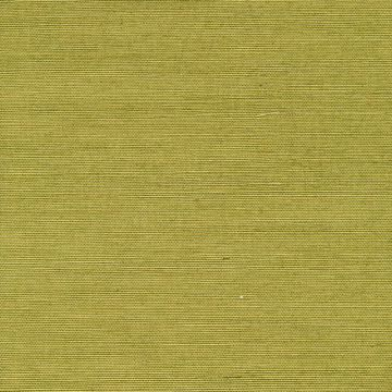 Hana Light Green Grasscloth