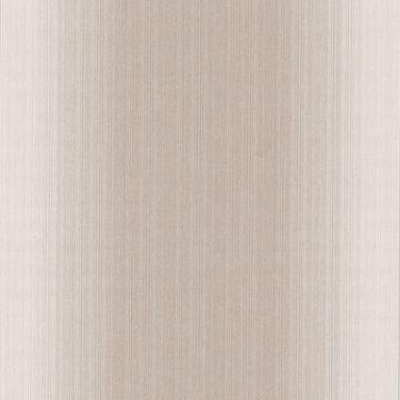 Velluto Beige Ombre Texture