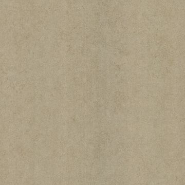 Madelaine Texture Beige Outline Rose Texture
