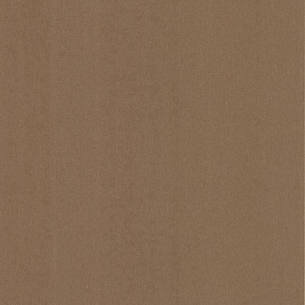 Baja Texture Brown Paisley Spot Texture