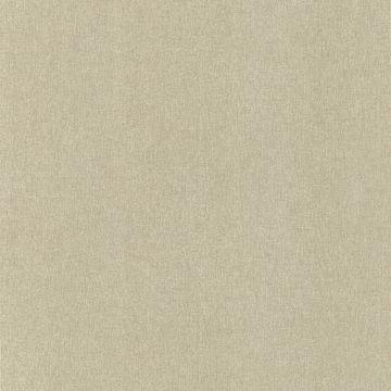 Baja Texture Light Brown Paisley Spot Texture