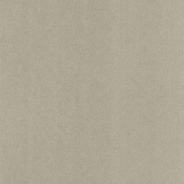 Baja Texture Grey Paisley Spot Texture