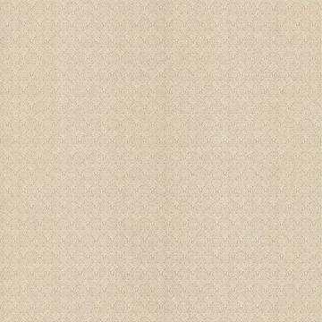 Giselle Texture Light Brown Ironwork Damask Texture
