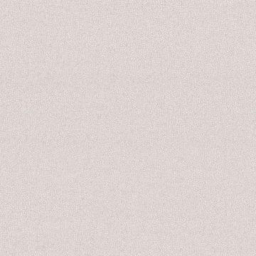 Notion Light Grey Texture