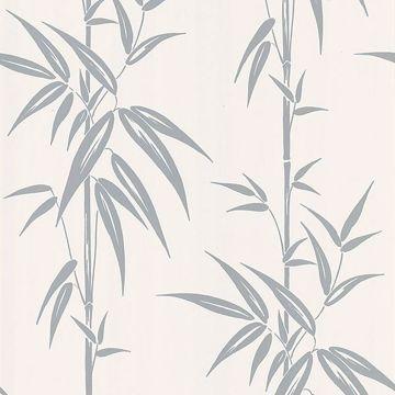Saharan Silver Bamboo Stalk