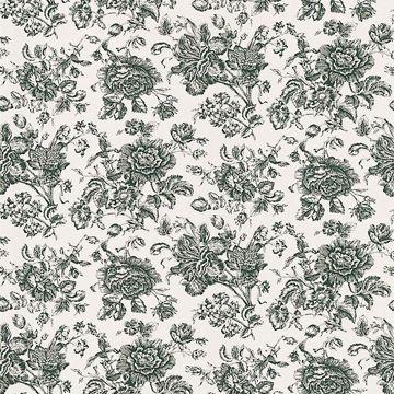 Pavot Cream Floral Toile