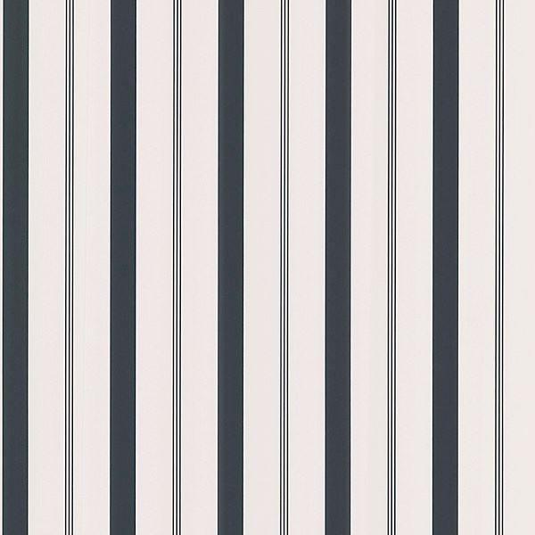 Stripes Black Varied Stripe
