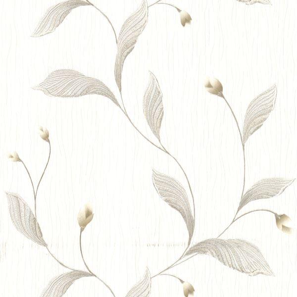 Ixia Silver Lily Trail