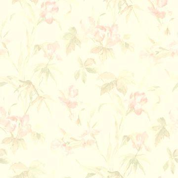 Iris Light Pink Iris Floral