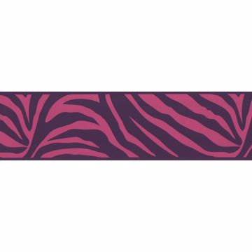 Zebra Crossing Pink Zebra Border