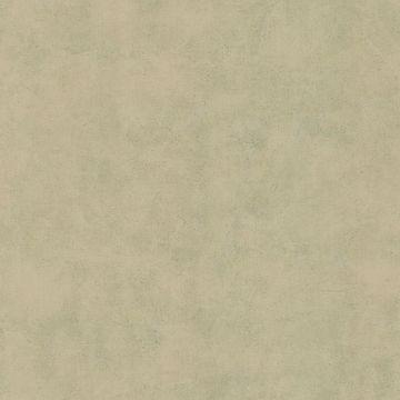 Pietra Taupe  Texture