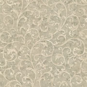 Lanza Taupe Scroll