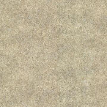 Prezio Silver Texture