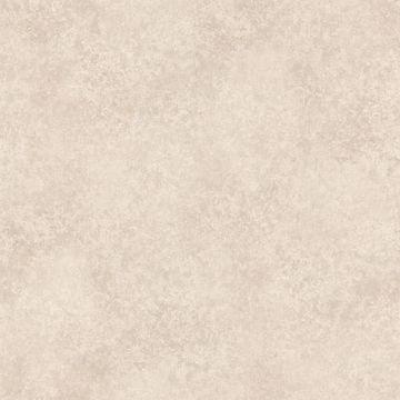 Romaine Taupe Texture