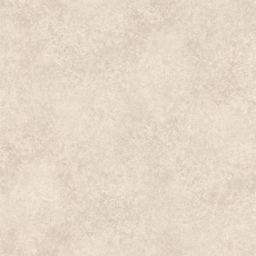 Hazel Taupe Marble Texture