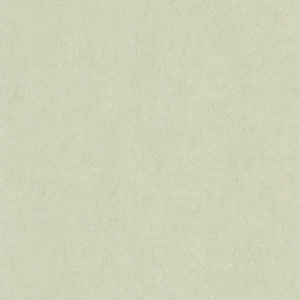 Shimmer Light Green Air Knife Texture
