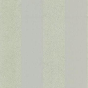 Shimmer Stripe Silver Stripe