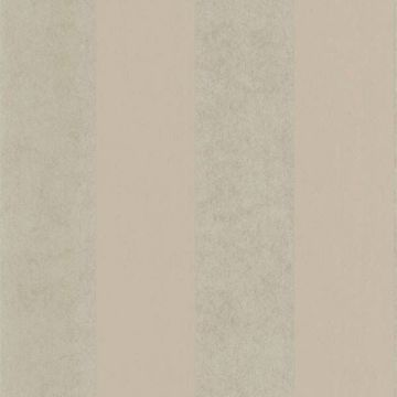 Shimmer Stripe Pewter Stripe
