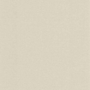Jasmine Silk Sage Texture