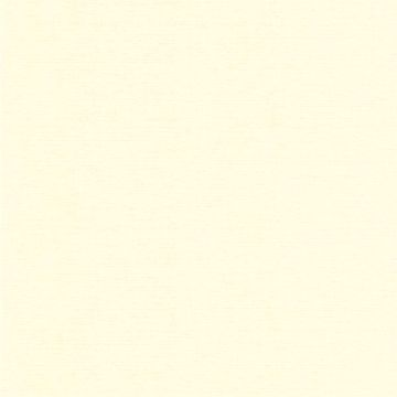 Jasmine Silk Pearl Texture