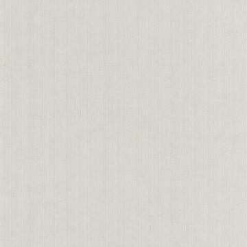 Atlantic String Grey Stripe Texture