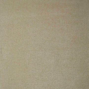 Corbeau Brass Damask Texture