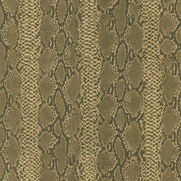 Python Brown Snakeskin