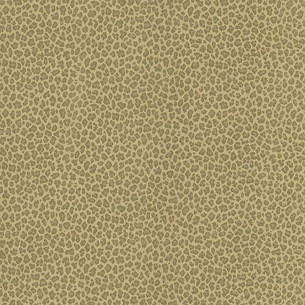 Cheetah Brown Animal Print