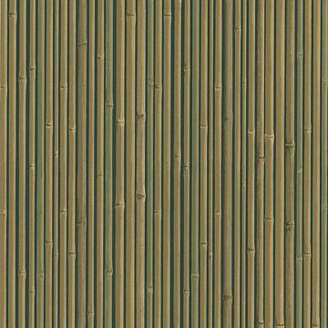Kyoto Black Bamboo