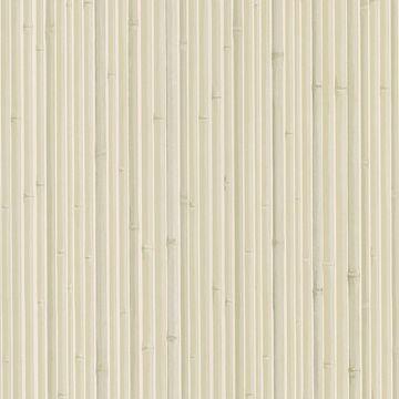 Kyoto Light Grey Bamboo
