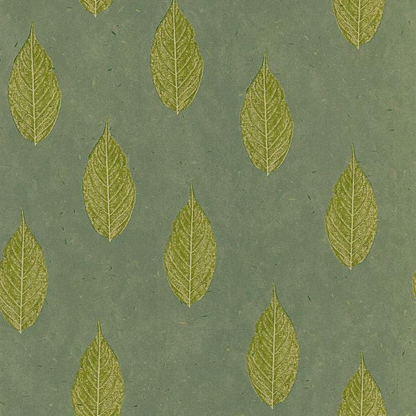 Madhya Green Leaves