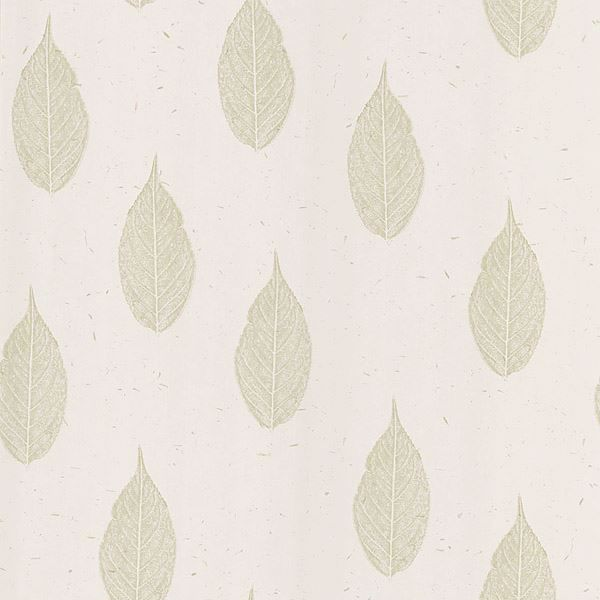 Madhya Cream Leaves