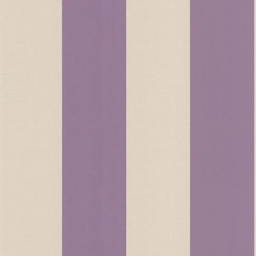 Purcell Purple Stripe