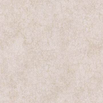 Fabien Taupe Cracked Texture
