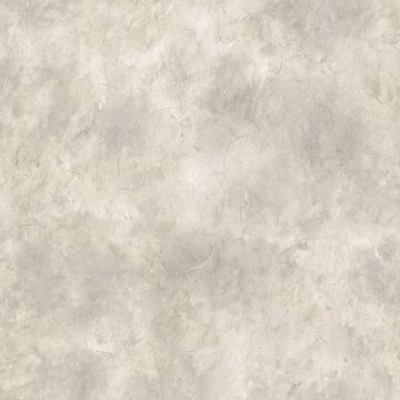 Ionian Light Grey Marble Texture