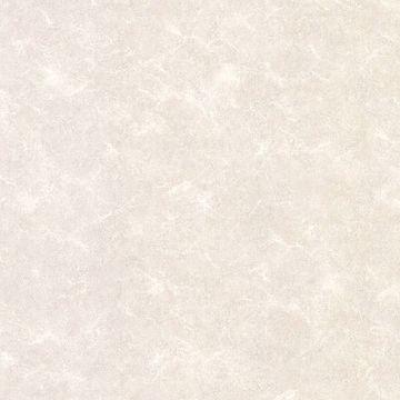 August White Texture