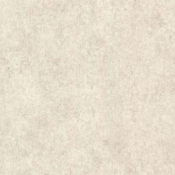 Fabien Light Grey Cracked Texture