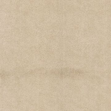 Jaipur Grey Elephant Skin Texture