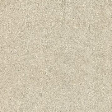 Jaipur Taupe Elephant Skin Texture