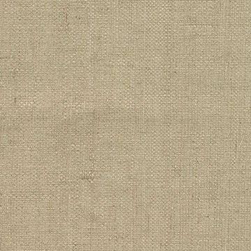 Fen Beige Grasscloth