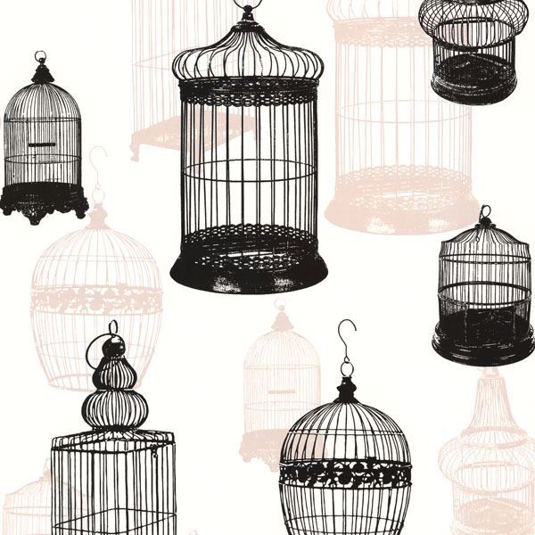 Avian Black Bird Cages