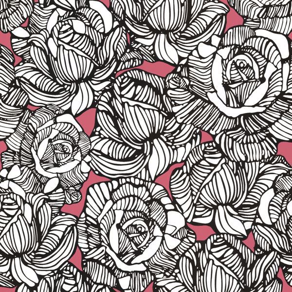 Calista Pink Modern Rose