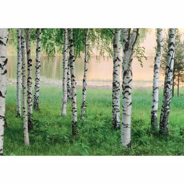 Nordic Forest Large