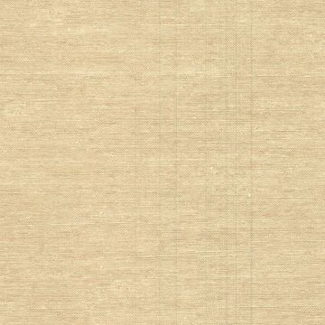 Wirth Beige Faux Grasscloth