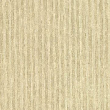 Ribbon Gold Fabric Stripe